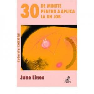 30 de minute pentru a aplica la un job - June Lines