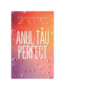 Anul tau perfect I - Charlotte Lucas