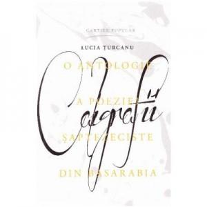 Caligrafii - Lucia Turcanu