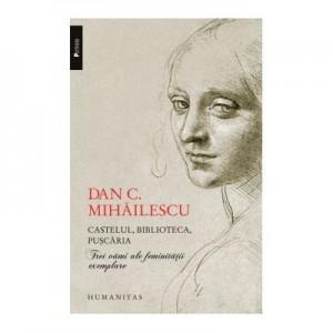 Castelul, biblioteca, puscaria. Trei vami ale feminitatii exemplare - Dan C. Mihailescu
