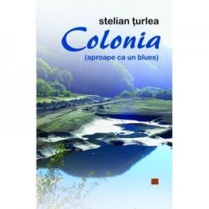 Colonia (aproape ca un blues) - Stelian Turlea