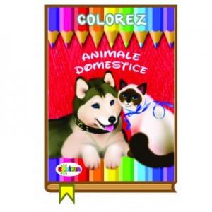 Colorez. Animale domestice