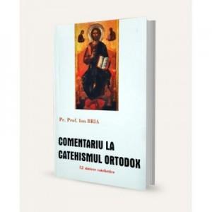 Comentariu la Catehismul Ortodox. 12 sinteze catehetice - Ion Bria