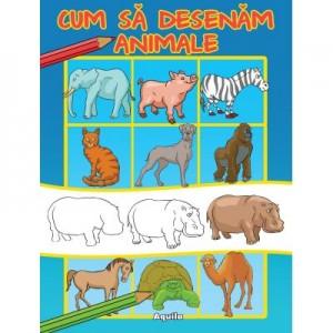 Cum sa desenam animale - Ilustrator Dan Negrut