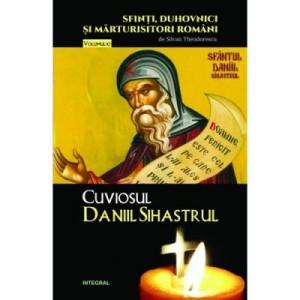 Cuviosul Daniil Sihastrul - Silvan Theodorescu