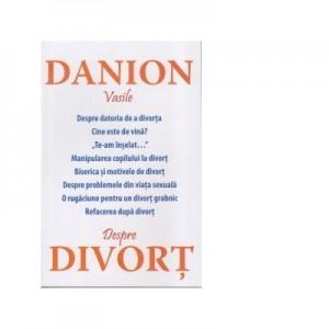 Despre divort - Danion Vasile