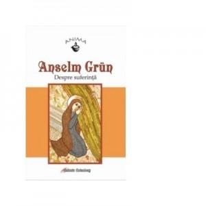 Despre suferinta - Anselm Grun