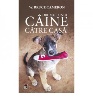 Drumul unui caine catre casa - W. Bruce Cameron
