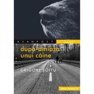 Dupa-amiaza unui caine - Grigore Soitu