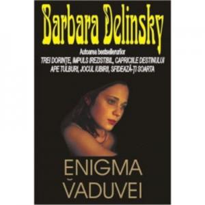 Enigma vaduvei - Barbara Delinsky