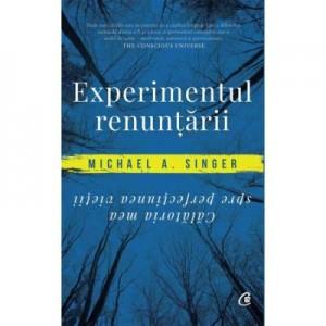 Experimentul renuntarii. Calatoria mea spre perfectiunea vietii - Michael A. Singer