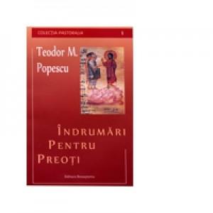 Indrumari pentru preoti - Pr. Teodor M. Popescu