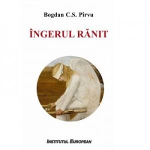 Ingerul ranit - Bogdan C. S. Pirvu