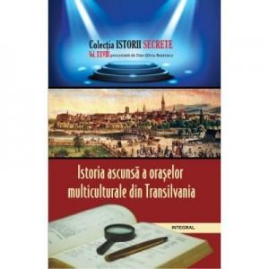 Istoria ascunsa a oraselor multiculturale din Transilvania - Dan-Silviu Boerescu