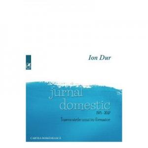 Jurnal domestic 1971-2017. Insemnarile unui in-formator - Ion Dur