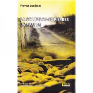 La solitude des pierres. La fissure - Flavius Lucacel
