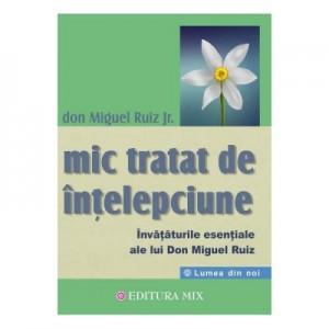 Mic tratat de intelepciune. Invataturile esentiale ale lui Don Miguel Ruiz - Don Miguel Ruiz Jr.
