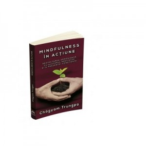 Mindfulness in actiune. Dezvoltarea armonioasa cu ajutorul meditatiei si a prezentei constiente - Chogyam Trungpa