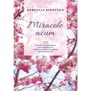 Miracole acum. 108 instrumente transformatoare pentru mai putin stres, o viata mai linistita si descoperirea adevaratului tau scop - Gabrielle Bernstein