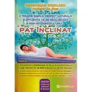 Pat inclinat - Gregorian Bivolaru