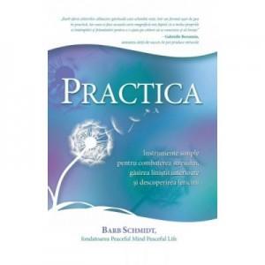 Practica. Instrumente simple pentru combaterea stresului, gasirea linistii interioare si descoperirea fericirii - Barb Schmidt