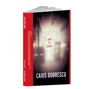 Praf in ochi - Caius Dobrescu