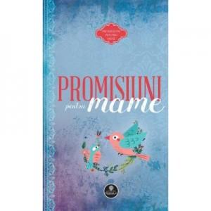 Promisiuni pentru mame