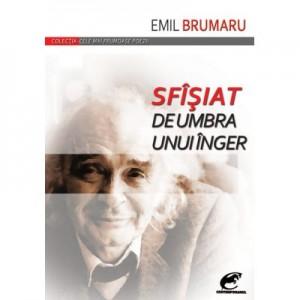 Sfîsiat de umbra unui inger - Emil Brumaru