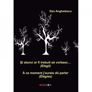 Si atunci ar fi trebuit sa vorbesc… (Elegii) - Dan Anghelescu