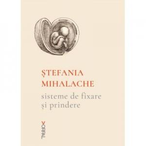 Sisteme de fixare si prindere - Stefania Mihalache
