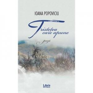 Tristetea care apune - Ioana Popoviciu