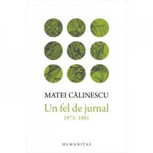 Un fel de jurnal (1973-1981) - Matei Calinescu