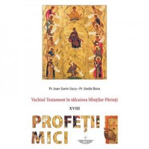 Vechiul Testament in talcuirea Sfintilor Parinti (XVIII) Profetii Mici - Pr. Ioan Sorin Usca