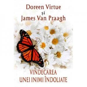 Vindecarea unei inimi indoliate - Doreen Virtue, James van Praagh